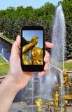 Tourist taking photo of Samson Fountain Stock Photos