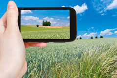 Tourist taking photo of summer country landscape Stock Images