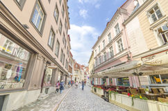 Tourist in Tallin, Estonia Royalty Free Stock Image
