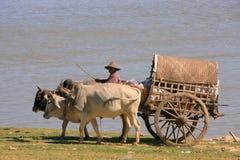 Tourist taxi in Mingun, Mandalay, Myanmar Stock Photo