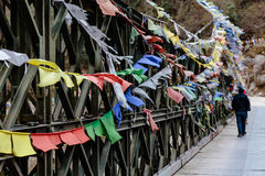 Tourist with tear colorful Tibetan prayer flags waving and swaddled with bridge over frozen river at Thangu and Chopta valley. Royalty Free Stock Image