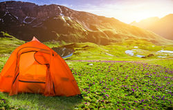 Tourist tent camping Royalty Free Stock Photography