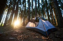 Tourist tent at campsite in the evening. Summer camping. Summer camping in the evening. Tourist white tent at campsite in the beautiful forest at sunset in the royalty free stock photos