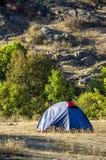A tourist tent. Close-up blue tourist tent at wild nature Stock Photos