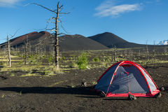 Tourist tent in Dead wood - consequence of catastrophic release of ash during the eruption of volcano in 1975 Tolbachik. Tourist tent in Dead wood - a Stock Images