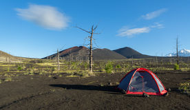 Tourist tent in Dead wood - consequence of catastrophic release of ash during the eruption of volcano in 1975 Tolbachik Stock Images