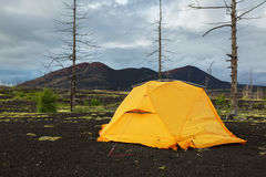 Tourist tent in Dead wood - consequence of catastrophic release of ash during the eruption of volcano in 1975 Tolbachik Royalty Free Stock Photo