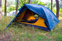 Tourist tent in forest Stock Photography