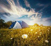 Tourist tent in forest camp among meadow Stock Images