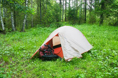 Tourist tent on glade in wood Royalty Free Stock Photos