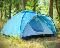Tourist tent in the green fores. At sunny day Royalty Free Stock Photo