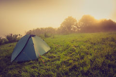 Tourist tent on green meadow at sunrise. Camping background. Freedom concept. Stock Images