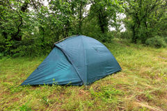 Tourist tent in wet forest Stock Image