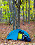 Tourist tent in the wood with backpacks Royalty Free Stock Image