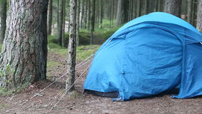 Tourist tent. In the woods stock video