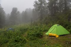 Tourist tents in the fog in forest. Altai Krai. Tourist tents in the fog in the forest. Altai Krai Royalty Free Stock Photo