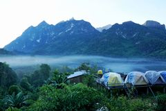 Tourist tents in forest at campsite, Camp site in the forest at Doi Chiang Dao - Thailand royalty free stock photography