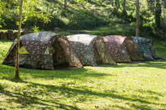 Tourist tents in forest Royalty Free Stock Photo