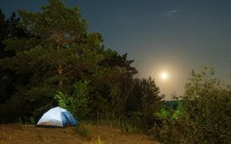 Tourist tents on a sandy beach at night with moonlight surrounded by trees under a starry sky. Advertising background Royalty Free Stock Images