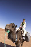 Tourist on top of a camel in the Sahara desert Stock Image