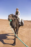 Tourist on top of a camel in the Sahara desert Stock Photography