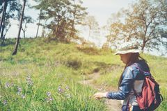 Tourist trail hiking in the forest Traveler Woman with backpack. Crossing the mountain Royalty Free Stock Photo