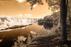 Tourist trail by the river of Gauja in Valmiera Latvia. autumn c. Olors in sunny day. infrared image Stock Photos