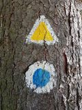 Tourist trail sign marked on a tree. Pathway marking in the forest stock images