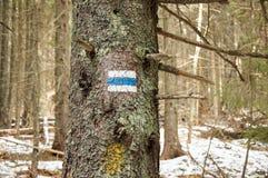Tourist  trail sign  on the tree Stock Photos