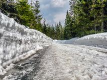 Tourist trail to Morskie Oko Royalty Free Stock Images
