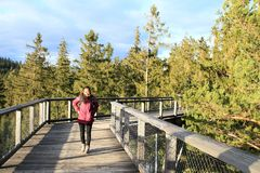 Tourist on The trail trees Lipno Lookout. Smiling Papuan tourist girl - young woman in purple jacket on The trail trees Lipno Lookout in Czech Republic Royalty Free Stock Photo