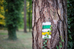 Tourist trail with yellow sign and green sign on the tree Stock Image