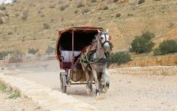 Tourist transport (carriage) in Petra,  Jordan Royalty Free Stock Photography