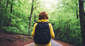 Tourist traveler with backpack standing into road at summer green forest, view back girl hiker in yellow hoody. Looking and enjoying the breath of fresh clean royalty free stock images