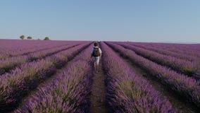 Tourist or traveller in lavender fields