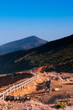 Tourist is trekking on nature trail at top of Mount Zao, Yamagat Stock Image