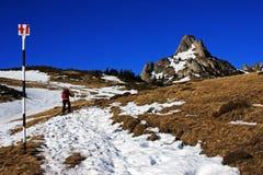 Tourist trekking through snow towards the Ciucas mountains, Romania Stock Photo