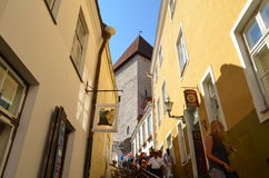 Tourist view of Old Town architecture in Tallinn, Estonia Royalty Free Stock Images
