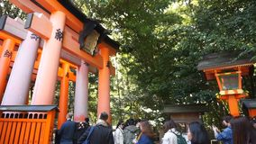 The tourist visit  beautiful architecture Fushimi Inari Shrine temple stock video footage