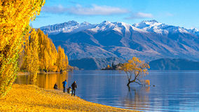 Tourist visiting Lake Wanaka, New Zealand in Autumn season. Royalty Free Stock Image