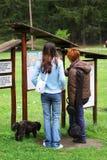 Tourist vor Karten-Vorstand Stockfoto