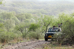 Tourist waiting on Safari Jeep in Ranthambore National park. RANTHAMBORE, INDIA-JUNE 26: People eagerly waiting for tiger sighting in Safari Jeep during game royalty free stock photos