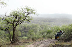 Tourist waiting on Safari Jeep in Ranthambore National park. RANTHAMBORE, INDIA-JUNE 26: People eagerly waiting for tiger sighting in Safari Jeep during game stock image