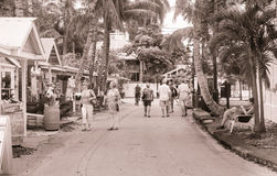 Tourist walk small palm tree lined Key West street with souvenir Royalty Free Stock Photography