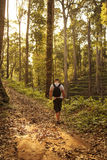Tourist walk on the wild jungle. Royalty Free Stock Photography