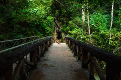 Tourist Walking Alone On The Bridge Among Beautiful Nature With Royalty Free Stock Photos