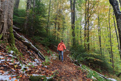 Tourist walking along a forest trail Royalty Free Stock Photos