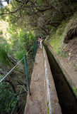 Tourist is walking  along irrigation canals. Historic water supply system, known as Levada in tropical forest, Madeira Island, Stock Photo