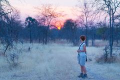 Tourist walking in the bush and Acacia grove Stock Photography