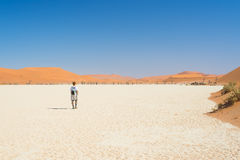 Tourist walking in the majestic Namib desert, Sossusvlei, Namib Naukluft National Park, main visitor attraction and travel destina Stock Photography